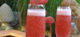 Erdbeer Sekt Coctail Thermomix